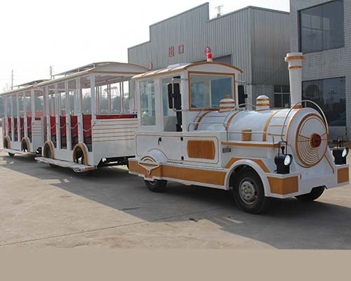 popular amusement park train rides without track
