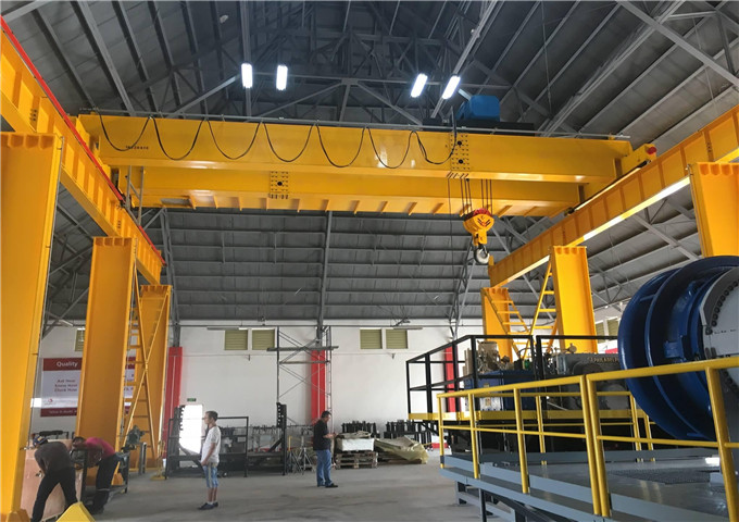 Order electric double bridge crane from China